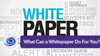 What Could a White Paper Do for You?