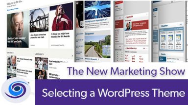 Episode #30 The New Marketing Show: Selecting WordPress Themes