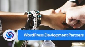 WordPress Development Partner vs. Web Vendor