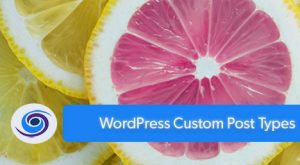 WordPress Custom Post Types: Why Should I Use Them?