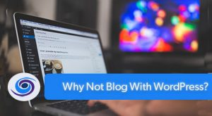 Why Not Blog?