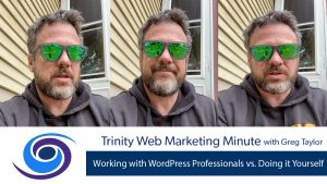 Working with WordPress Professionals vs. Doing it Yourself